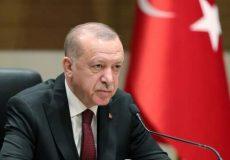 مرندی: ایران مایل نیست اردوغان تحقیر شود/بهترین راه برای ترکیه پذیرش آتشبس است
