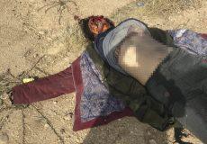 کشف جسد یک زن در شیراز